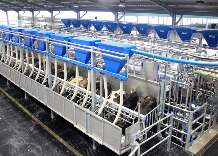 Dairy_inner